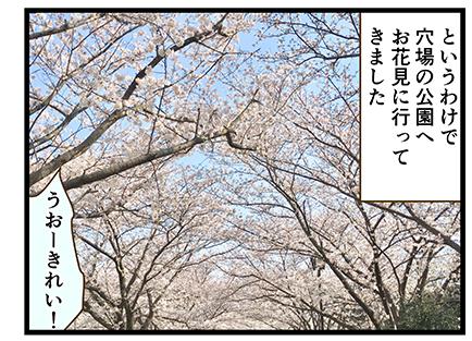 4coma_355_08