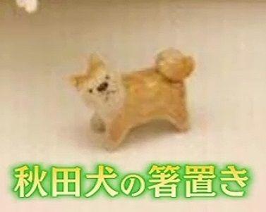 hasioki_dog