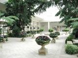 美術館に隣接している室内ガーデン