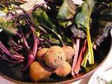 珍しい有機野菜がいっぱい〜♪