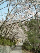 千光寺公園入り口