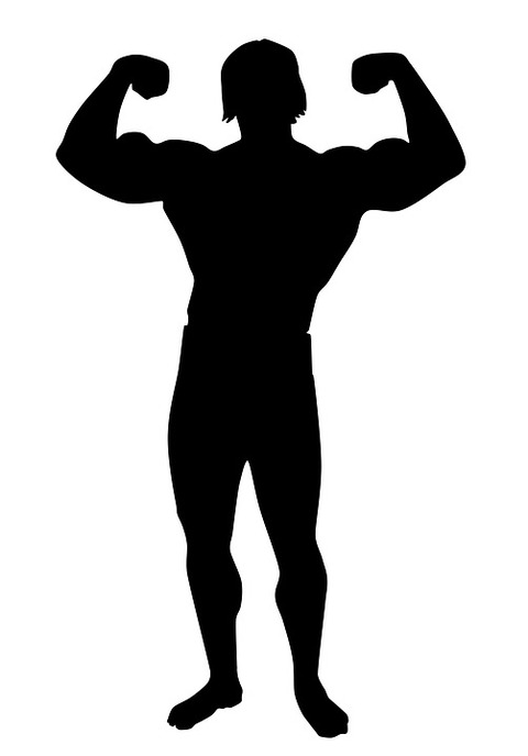 muscle-1660249_960_720