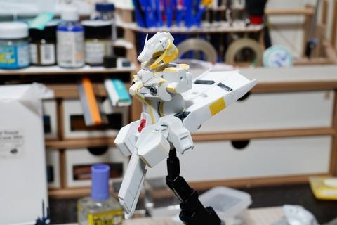 hizenthleyii-build4 (9)