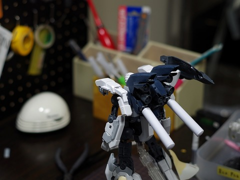 mg-sinanjyu-stein-build (52)