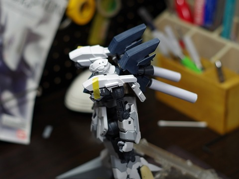 mg-sinanjyu-stein-build (54)
