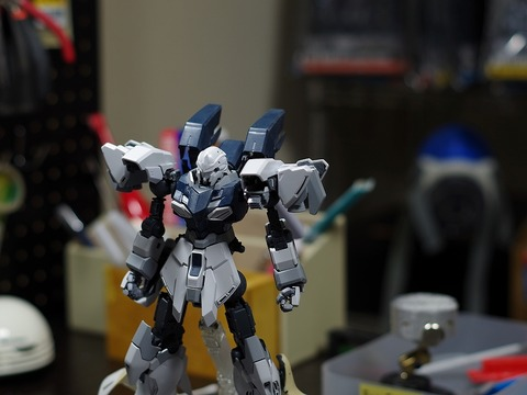 mg-sinanjyu-stein-build (50)