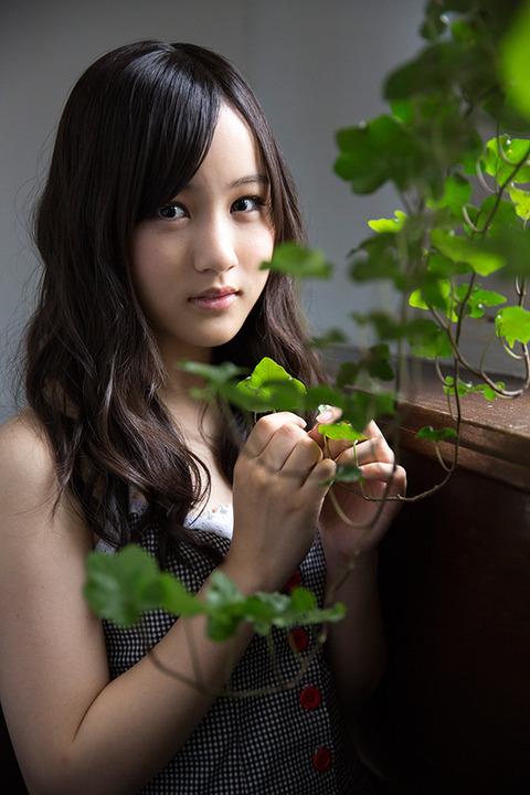 photo-hoshino11