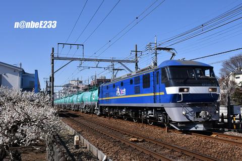 20210223-DSC_3659