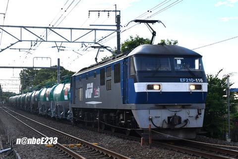 20200611-DSC_7885