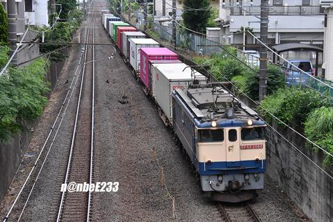 20210616-DSC_8031