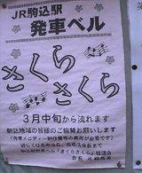 20050330_1613_0000.jpg