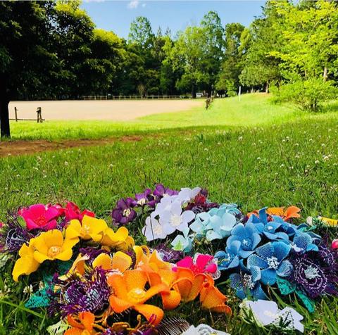 新緑とニャンドゥティのお花たち