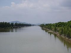 広州市の最南端、南沙にある湿地公園へ小旅行 8
