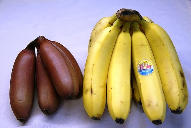 黒光りするバナナ