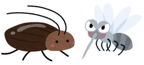 蚊とゴキブリどちらか滅ぼせるならどっち??