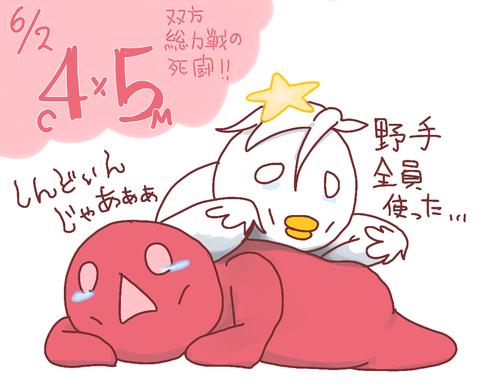 【6/2】鷲===-鷹===-猫=====檻=公======-鴎