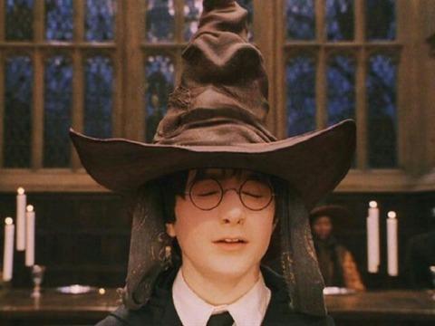 ハリー「スリザリンは嫌だスリザリンは嫌だ」組分け帽子「ロッテ」