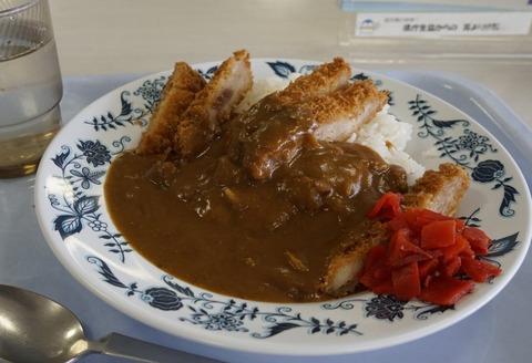 香川県庁の食堂カレー やる気のない盛り付け、冷めたカツ、食堂のカレーにふさわしいクオリティと話題