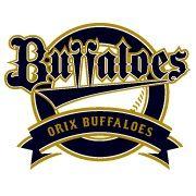 bu_logo1
