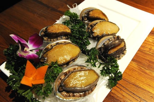 abalone-2495964_960_720