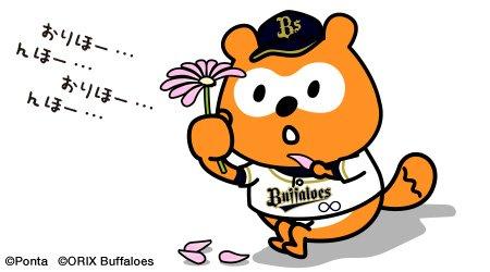 【ん報】バファローズポンタ、花占いに挑戦!結果は。。。。