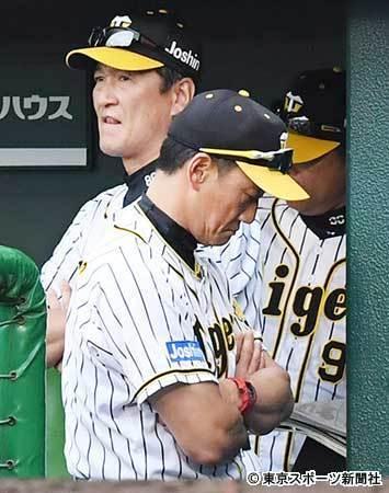 阪神・金本監督 不満の矛先は首脳陣にも「コーチがしっかり指示を出すとか」