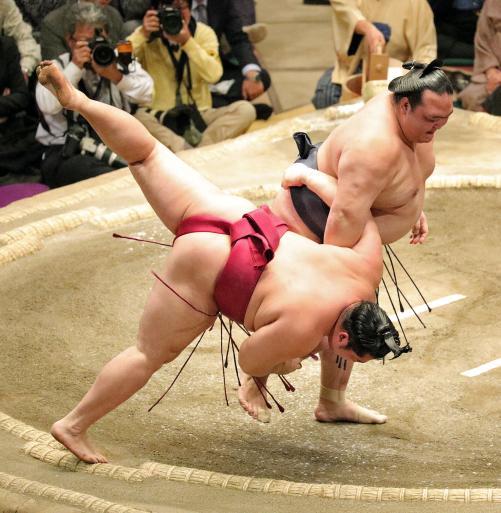 f-sumo-kise170118yg-w500_0