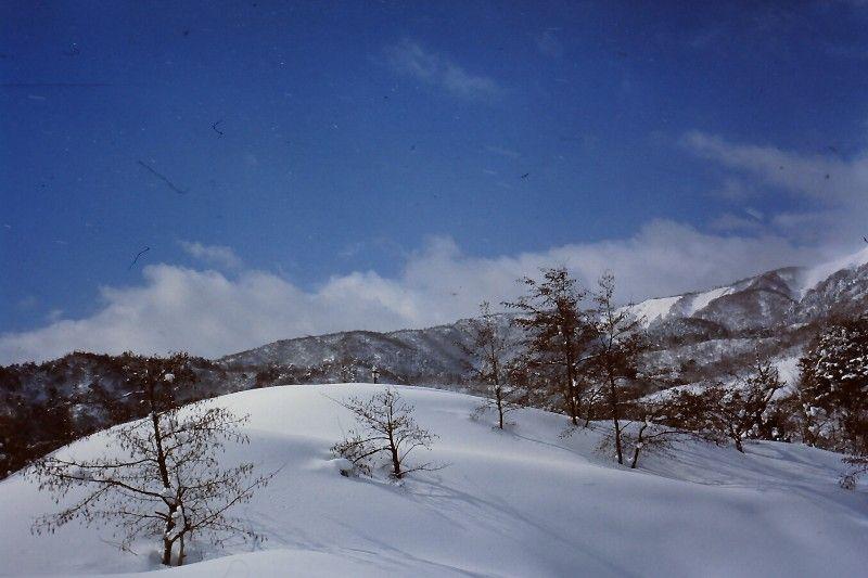 2011akasaka2