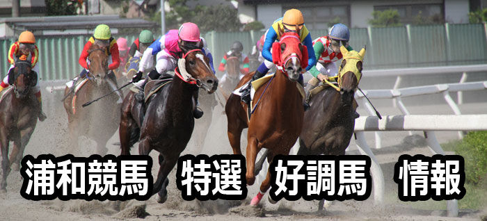 浦和競馬レース01