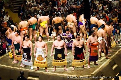 Sumo Wrestling - 102
