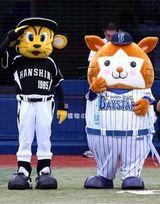 【すごDe】阪神タイガース、2005年以来八年ぶりに甲子園で3タテ食らう