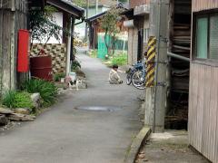 biwako_041114_28