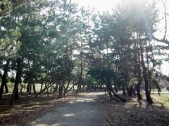 biwako_041218_12
