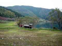 biwako_041114_06