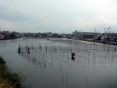 biwako040904_26