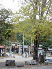 biwako_041114_12