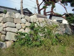 biwako_041024_15