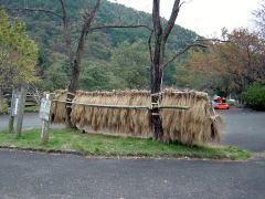 biwako_041114_08