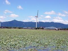 biwako_040613_08