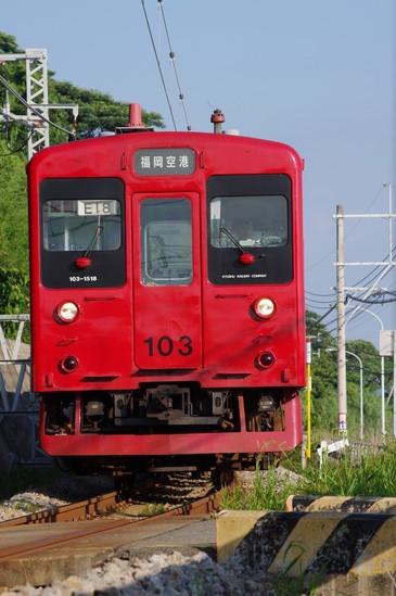 IMGP7307