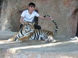 虎と記念撮影!