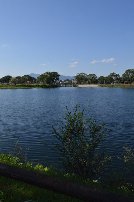 江津湖10blg