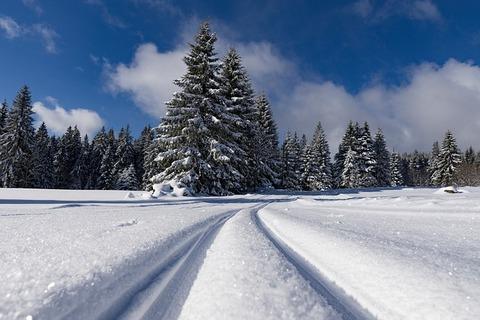 snow-3137807_640