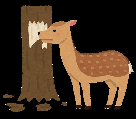animal_shika_syokugai_tree