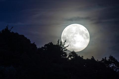 full-moon-1775765_640