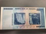 100兆ジンバブエドル紙幣裏