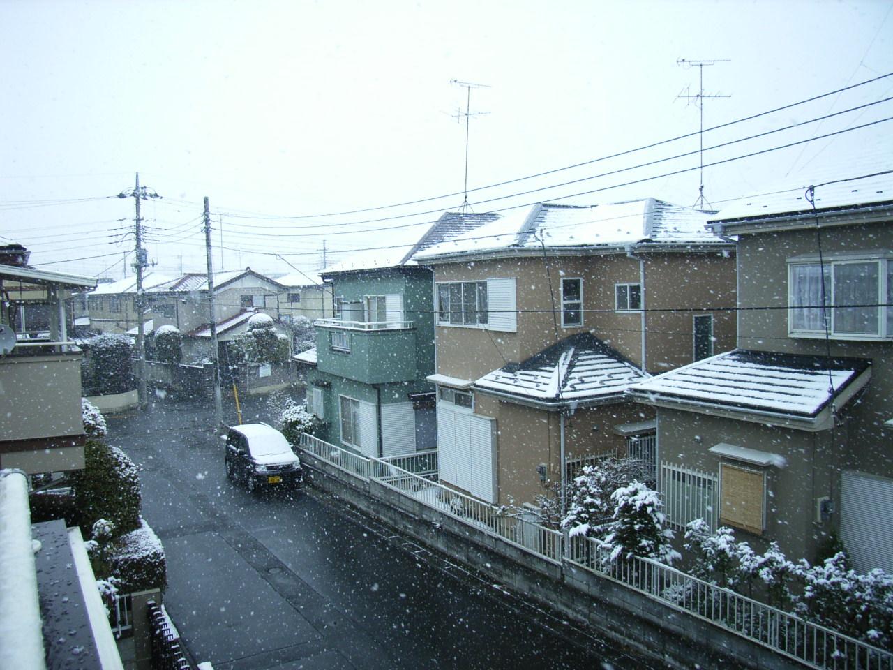 1月21日雪