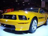 Mustang!!