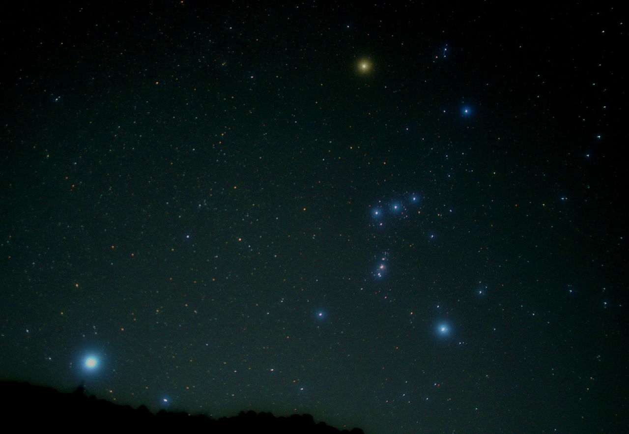 Sirius and Orion