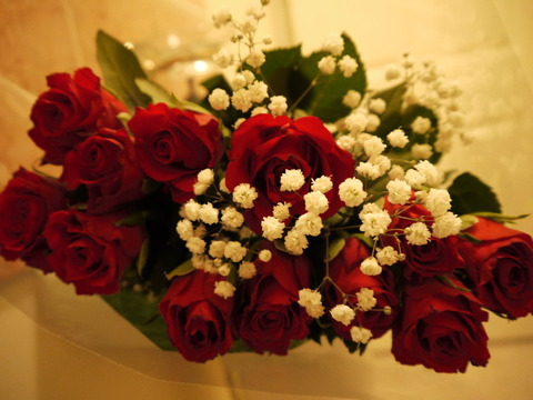 red_valentine_roses